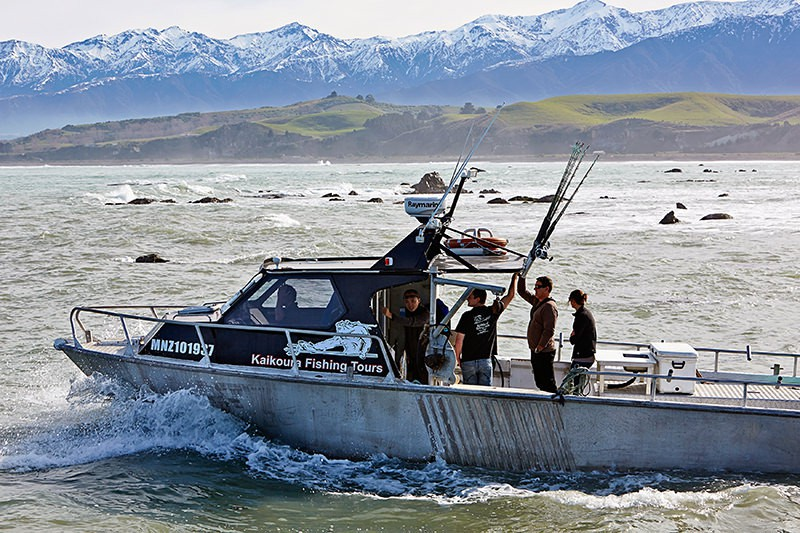 Kaikoura fishing charters